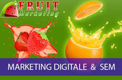 MARKETING DIGITALE & SEM